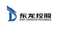 河南东龙控股有限公司