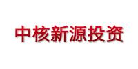 北京中核新源投资有限公司
