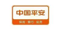 中国平安金融集团中原路分部