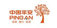 中国平安金融集团河南分公司刘主任