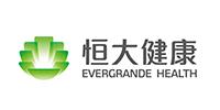 深圳市恒大健康产业有限公司